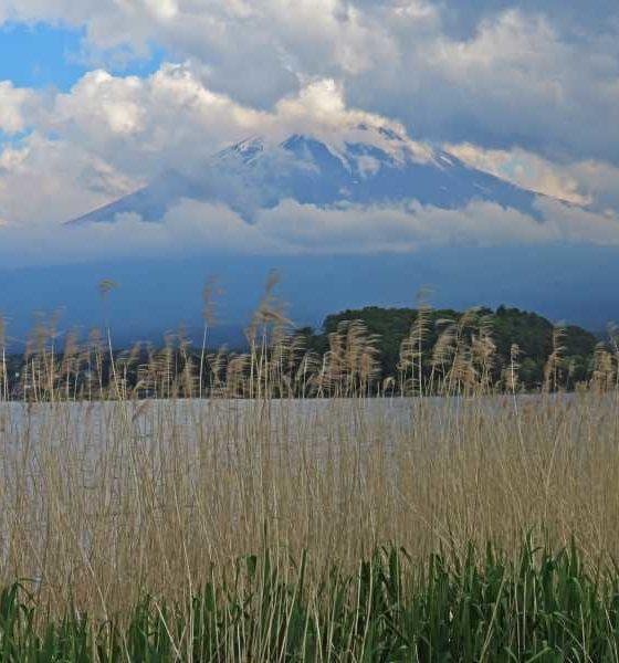 Monte Fuji: bate e volta desde Tóquio ao maior cartão-postal do Japão