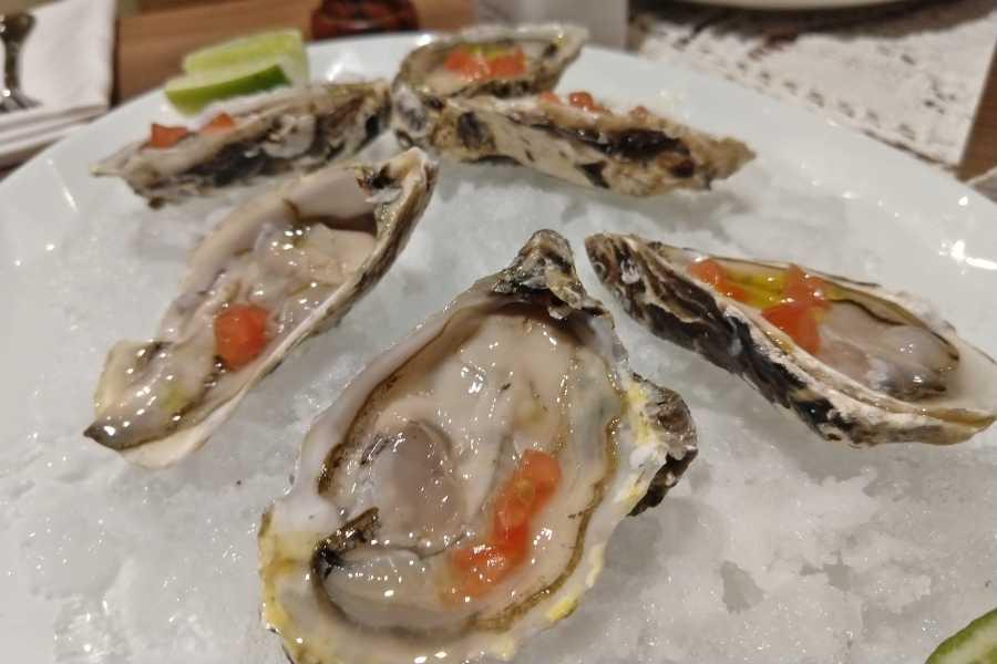 Onde comer ostras em Fortaleza
